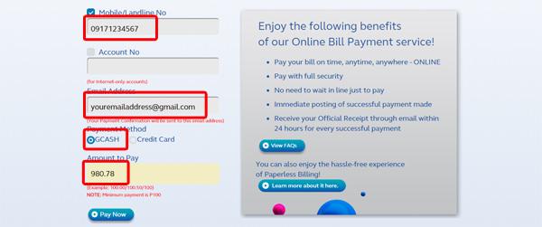 Globe Online Bills Payment Service 2 copy