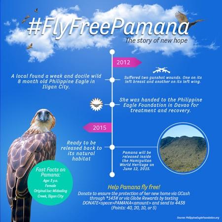 Globe Fly Free Pamana2