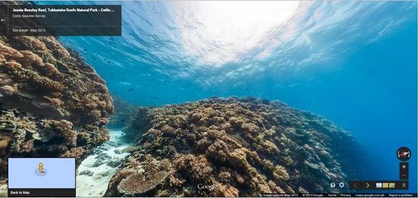 Jessie Beazley Reef, Tubbataha Reefs Natural Park, Philippines