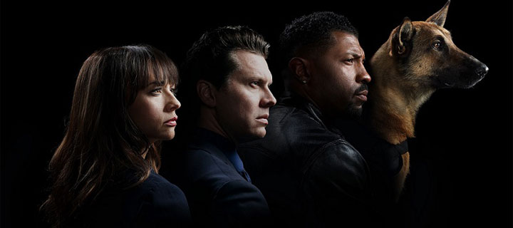 Get your dose of hijinks this New Year as Warner TV and truTV bring full season marathon of Angie Tribeca