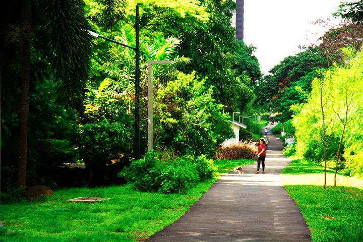 A Quick Guide to Exploring Bonifacio Global City, Greenway Park