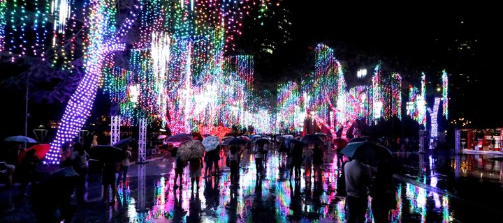 Ayala triangle gardens lights show 2017 garden ftempo for Kansas city home and garden show 2017