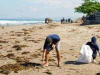 Leave nothing but your footprint: Reef makes a pledge for cleaner beaches