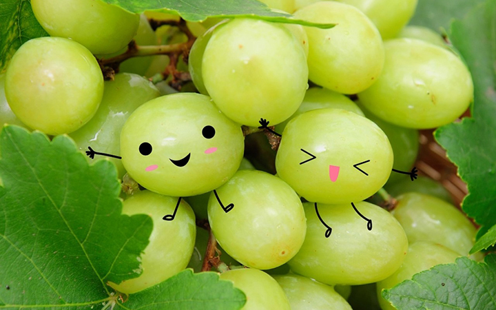 Have a great day with Australian grapes! Enjoy a sharable sweet treat from Australia. Simple yet satisfying!