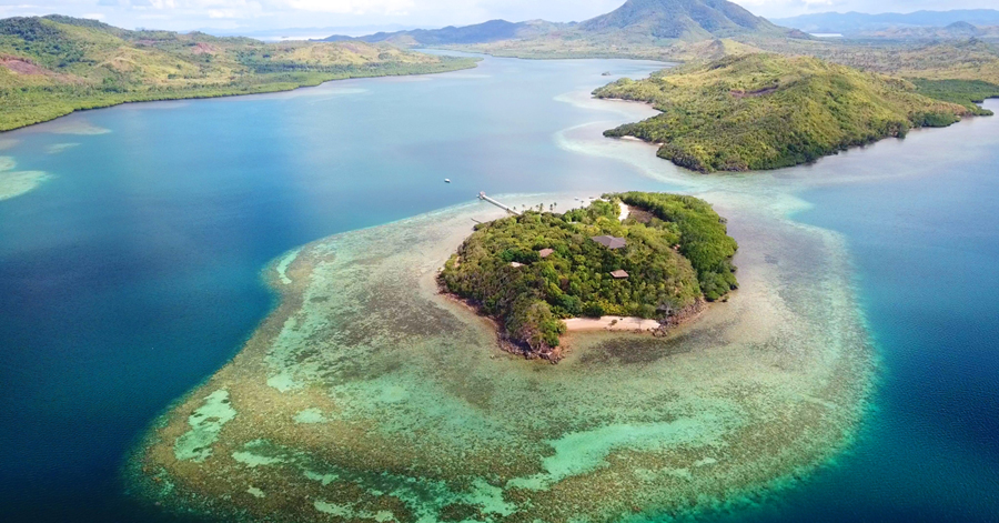 Accenture, Intel and Sulubaaï Environmental Foundation Use Artificial Intelligence to Save Coral Reefs