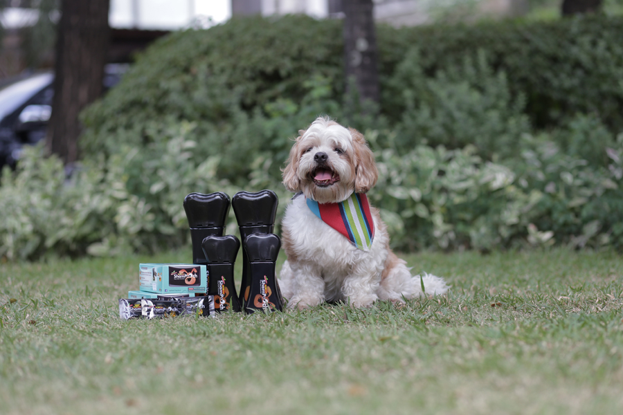 At-Home Pet Grooming Tips for Fur Parents