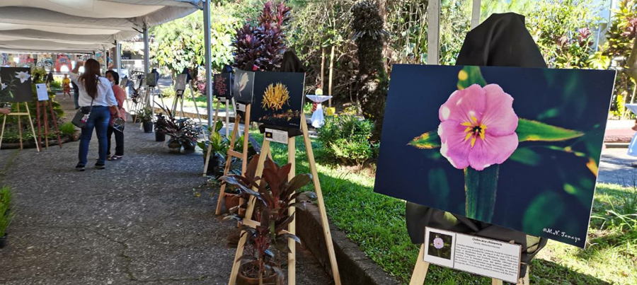DOT chief visits Baguio City, touts cultural tourism with creative crawls